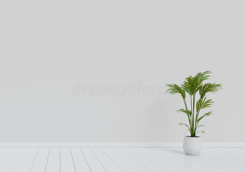 Modern interior design of living room with natural green plant pot on white glossy wooden floor. Home and Living concept. Lifestyle theme. 3D illustration royalty free illustration