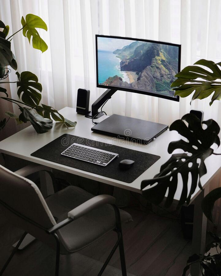 Modern workplace with homeplants inside. Minimalism stylish interior. Work place at home. Minimalism stylish interior. Modern interior inside with plants royalty free stock image