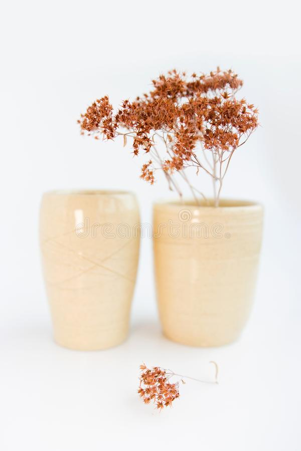 Two beige vases with dried plants on a white background. minimalism style. interior decoration. Two beige vases with dried plants on a white background royalty free stock photos