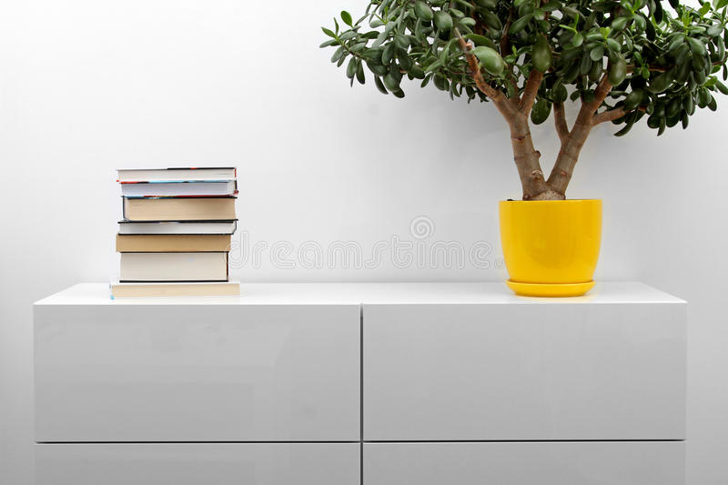White commode with stack of books and flower pot in bright minimalism interior. White commode with stack of books and flower pot in minimalism interior royalty free stock images