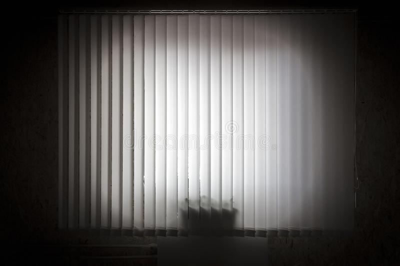 Window with vertical blinds. Window with white vertical blinds close-up royalty free stock photos