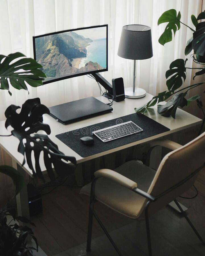 Work place at home. Minimalism style and modern interior inside with plants. Work place at home. Minimalism stylish interior. Modern interior inside with plants stock photography