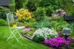 Сочетание растений в ландшафтном дизайне – особенности и нужная комбинация растений